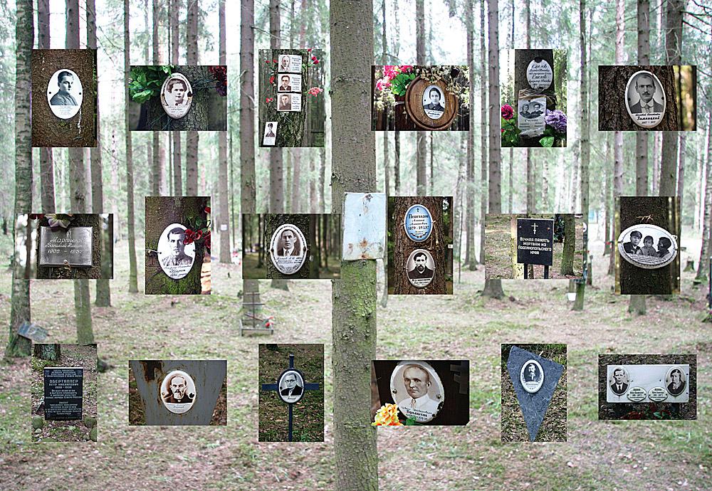 Власти признали статус самого большого расстрельного могильника СССР