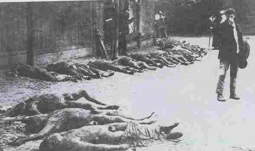 «Подлежат расстрелу все лица, прикосновенные к белогвардейским организациям, заговорам и мятежам»