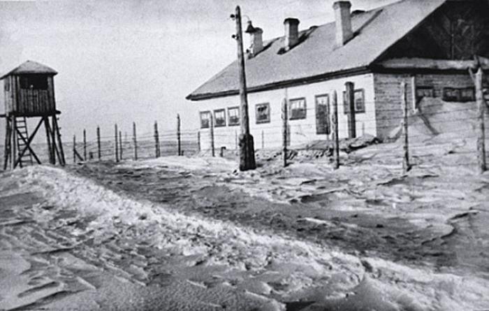 Яблоко от бабы Тони. Рассказы последних жертв советских лагерей