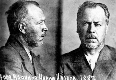 Как Берия и Лысенко сгноили академика. 80 лет назад ученый-генетик Вавилов был арестован НКВД